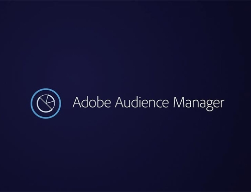 Adobe Audience Manager & Princess Cruises